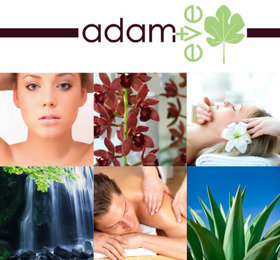 Salons find beauty and spas news reviews and information for Adam and eve salon